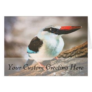 Blue Breasted Kingfisher Bird Photograph Card