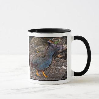 Blue-breasted Quailmoose mug