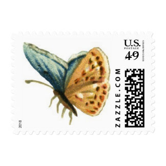 Blue-Brown Butterfly Postage Stamp