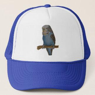 Blue budgie art cap
