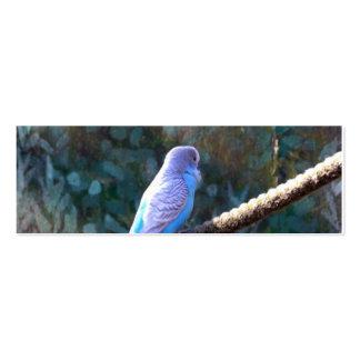 Blue Budgie Bird Business Card