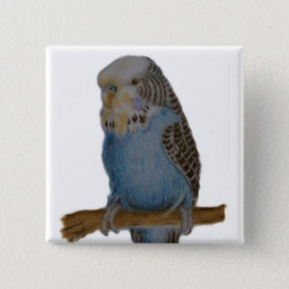 blue budgie button