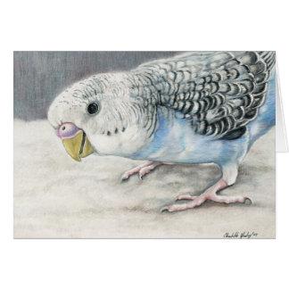 Blue Budgie Parakeet Art Note Card