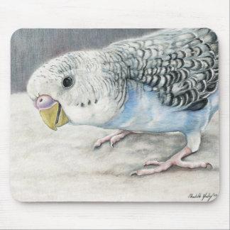 Blue Budgie Parakeet Bird Art Mouse Pads