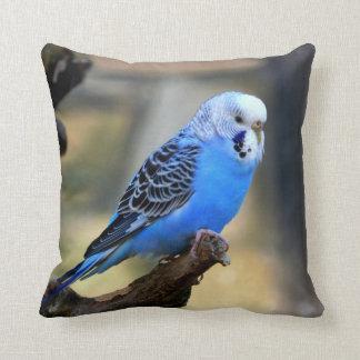Blue Budgie Pillow