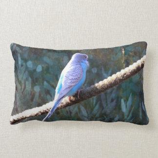 Blue Budgie Pillows