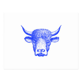 Blue Buffalo Postcard