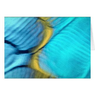 Blue bulges card