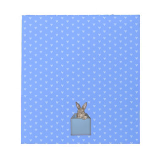 blue bunny-in-the-box notepad