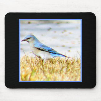 Blue Bunting Bird Mouse Pad