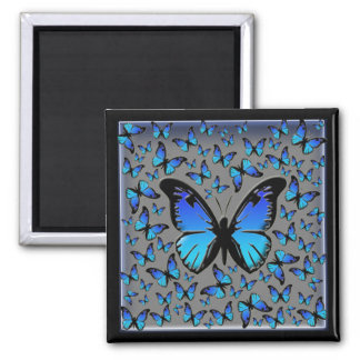 blue butterflies 2 inch square magnet