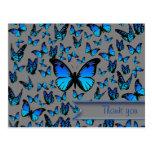 blue butterflies postcard