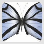 Blue Butterfly 5 Giant Blue Vane Square Sticker