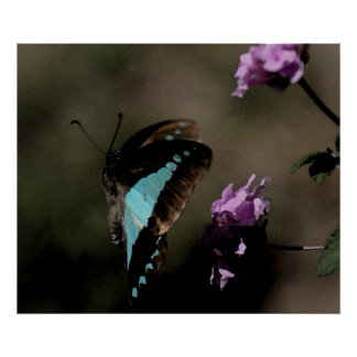 Blue Butterfly Abstract Poster