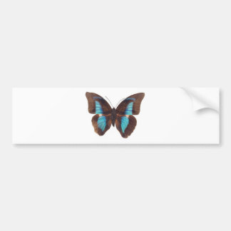 Blue butterfly artwork - Be Your Authentic Self Bumper Sticker