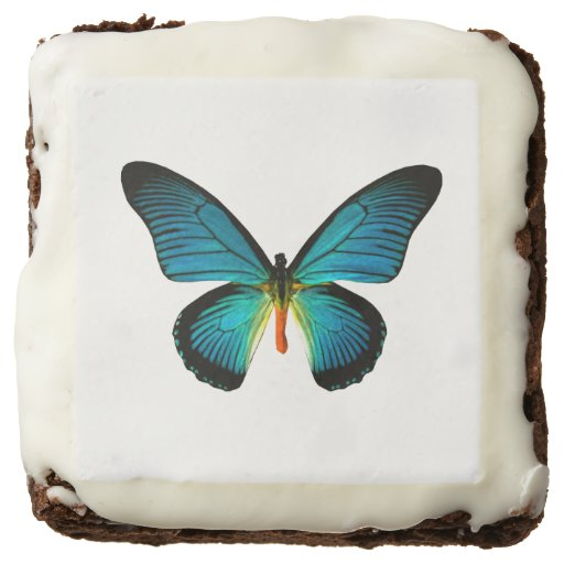 Blue Butterfly Brownies Square Brownie