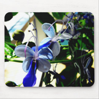Blue Butterfly Bush Flower Mouse Pad