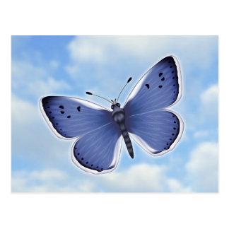 Blue Butterfly digital illustration Postcard