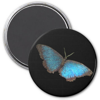 blue butterfly ( digital image ) 3 inch round magnet
