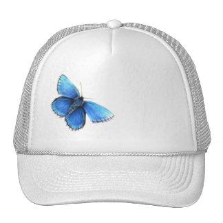 Blue butterfly fine art hat