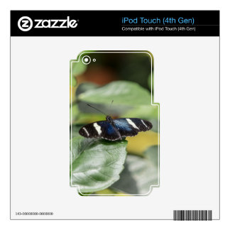 Blue Butterfly Fly Away Decal For iPod Touch 4G