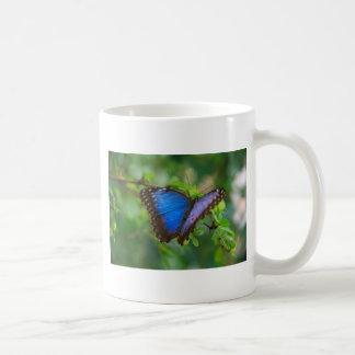 Blue Butterfly Gifts Mug