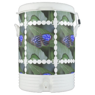 Blue Butterfly Igloo Beverage Cooler