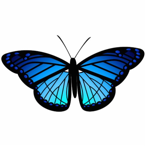 Blue butterfly magnet photo cutouts