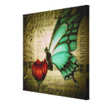 Blue Butterfly on Red Poppy Gallery Wrap Canvas