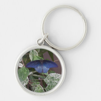 Blue Butterfly Photo Keychain