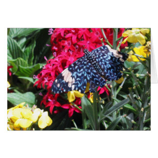 Blue Butterfly Picture in Flowers Greeting Card