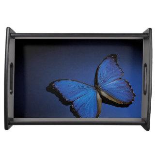 Blue butterfly serving platter