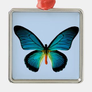 Blue Butterfly Square Ornament