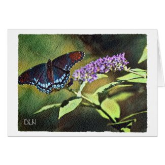 Blue Butterfly/Wildlife /Watercolor Look