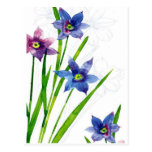 blue by you watercolor postcards