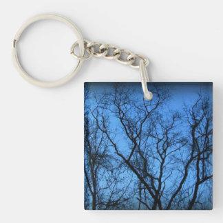 Blue Cage Keychain
