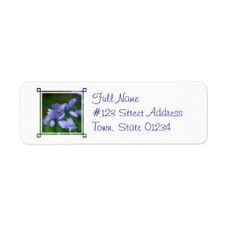 Blue Campanula Flowers Mailing Label Return Address Label