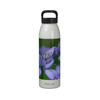 Blue Campanula Flowers Water Bottle