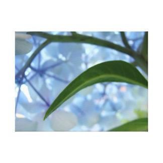 Blue Canvas art prints Hydrangea Flower Garden