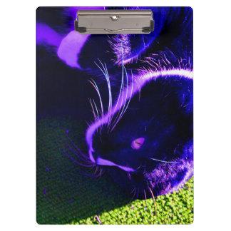 blue cat on side pop art feline animal image clipboard