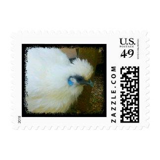 Blue Cheeks Silkie Chicken Stamps
