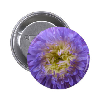 Blue China Aster Button