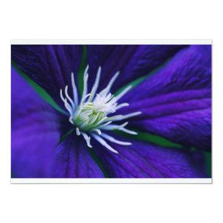 Blue Clematis macro Card