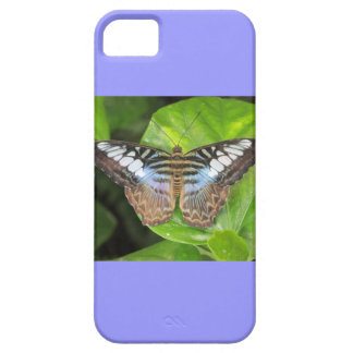 Blue Clipper Butterfly iPhone 5 Case