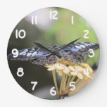 Blue Clipper Butterfly Large Clock