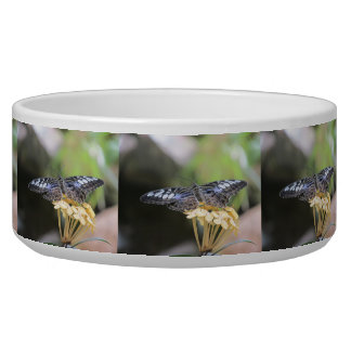 Blue Clipper Butterfly Dog Food Bowls