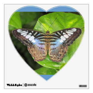 Blue Clipper Butterfly Wall Decal