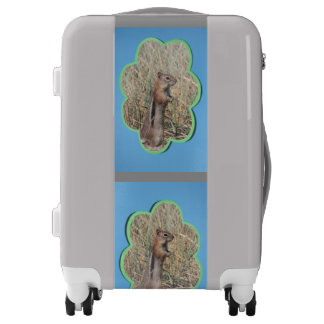 Blue Clouds Add Photo Frame Luggage