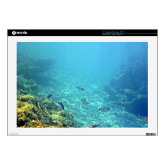 Blue Color Water With Fishes Laptop Skin