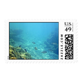 Blue Color Water With Fishes Postage Stamp